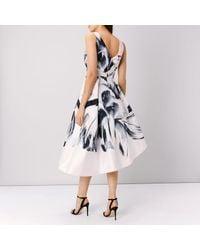 Coast Multicolor Waldorf Midi Dress