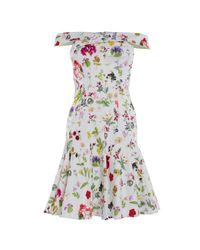 Coast Multicolor Lilian Printed Cotton Dress