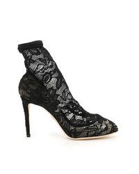 Stivaletti Pizzo Stretch di Dolce & Gabbana in Black