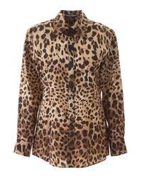 CAMICIA STAMPA LEOPARDO di Dolce & Gabbana in Brown