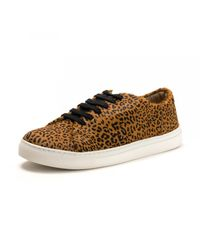 Joules Brown Solena Leather Cupsole Trainer