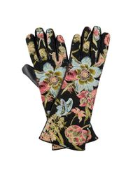 Hobbs | Multicolor Verdure Glove | Lyst