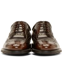 Burberry Brown Shortwing Pakefield Brogues for men