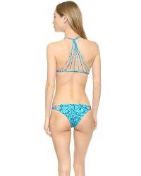 Mikoh Swimwear - Blue Banyans Reef Bikini Top - Reef - Lyst