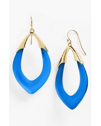 Alexis Bittar 'lucite - Neo Bohemian' Open Drop Earrings - Brocade Blue