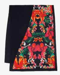 Ted Baker Black Toulia Tropical Toucan Scarf