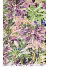 Pashma Multicolor Cashmere-silk Kauu Print Scarf