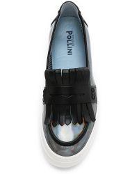 Studio Pollini - Gray Slip On Loafer Sneakers - Dark Grey - Lyst