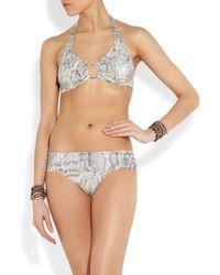 Melissa Odabash Multicolor Brussels Snake-print Underwired Halterneck Bikini