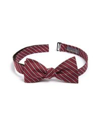 Calibrate | Gray 'isabela' Stripe Silk Blend Bow Tie for Men | Lyst