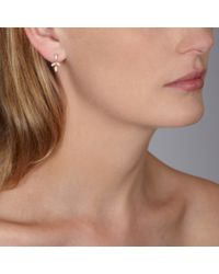 Astley Clarke   Pink Rose Gold Falling Leaf Chandelier Earrings   Lyst
