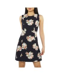 Dorothy Perkins Blue Petite Navy Floral Print Fit And Flare Dress