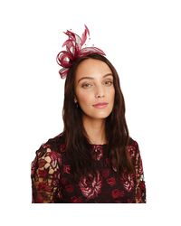 Phase Eight Red Payton Bow And Feather Fascinator