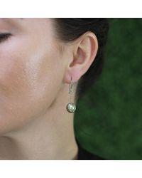Todd Reed - Metallic Tahitian Pearl And Diamond Drop Earrings - Lyst