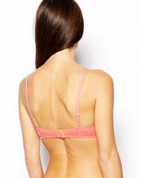Gossard Pink Glossies Sheer Bra