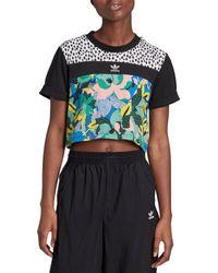 Adidas Blue Originals Cropped Printed T-shirt