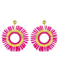 Panacea Pink Suede Fringe Hoop Statement Earrings