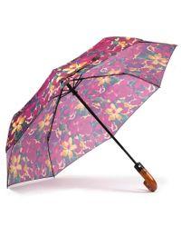 Patricia Nash Multicolor Blooming Romance Collection Magliano Umbrella