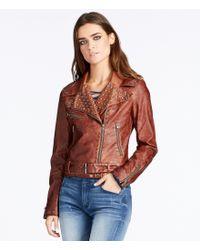 William Rast | Orange Kate Faux-leather Moto Jacket | Lyst