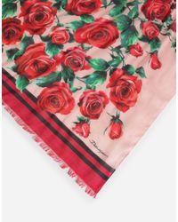 Sciarpa Stampata Modal Cashmere 135 X 200 di Dolce & Gabbana in Red