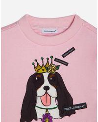 Dolce & Gabbana Pink Printed Cotton Sweatshirt