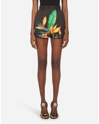 Shorts In Drill Stampa Strelitzia di Dolce & Gabbana in Multicolor