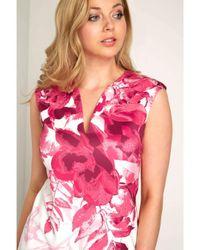 Dorothy Perkins Pink Roman Originals Cerise Notch Neck Dress