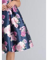 Dorothy Perkins Blue Chi Chi London Curve Navy Floral Print Skater Dress