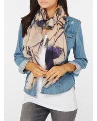Dorothy Perkins - Multicolor Thistle Floral Print Scarf - Lyst