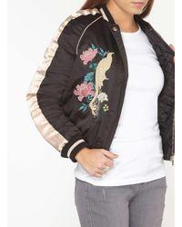 Dorothy Perkins Black Petite Embroidered Bird Bomber Jacket