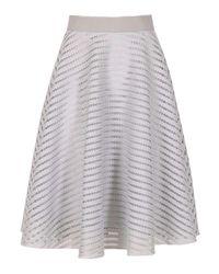 Dorothy Perkins Gray Izabel London Grey Skater Skirt