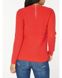 Dorothy Perkins Multicolor Petite Coral High Neck Jumper