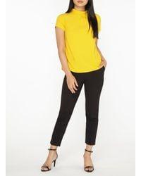 Dorothy Perkins Orange Petite Ochre Roll Neck T-shirt