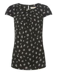 Dorothy Perkins - Billie & Blossom Tall Black Ditsy Print Shell Top - Lyst
