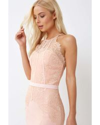Dorothy Perkins Pink Little Mistress Blush Lace Bodice Maxi Dress