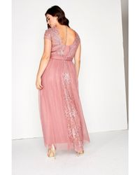 Dorothy Perkins Little Mistress Curve Pink Lace Top Maxi Dress