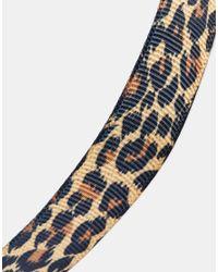 ASOS Multicolor Leopard Print Choker Necklace