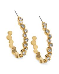 T Tahari - Metallic 14k Goldplated Staggered Crystal Hoop Earrings - Lyst