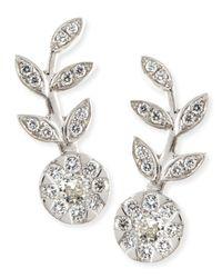 Rina Limor - Metallic 18k White Gold & Diamond Floral Climber Earrings - Lyst