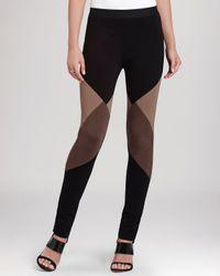 BCBGMAXAZRIA Black Jude Color Block Leggings
