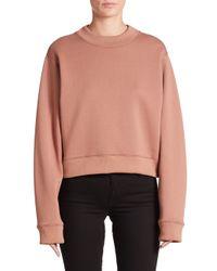 Acne | Pink Bird Cropped Sweatshirt | Lyst