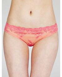 Wacoal Pink Embrace Lace Briefs