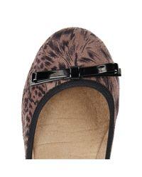 Butterfly Twists Brown Ballerina Shoe