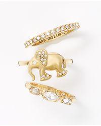 Ann Taylor | Metallic Elephant Ring Set | Lyst