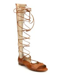 Lyst Michael Kors Birdie Leather Lace Up Gladiator
