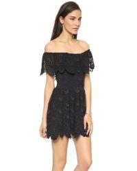 Nightcap Black Riviera Lace Fit Flare Dress White