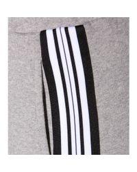 Tomas Maier Gray Cotton Track Pants
