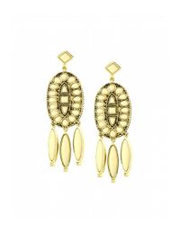 House of Harlow 1960 | Metallic Howl Feather Earrings | Lyst