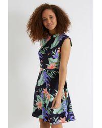 Oasis Black Tropical Palm Twist Neck Shift