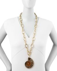 Devon Leigh - Brown Fossilized Shell Pendant Necklace - Lyst